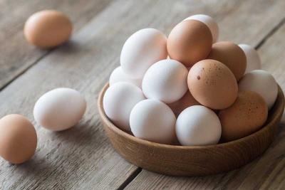 ظروف بسته بندی تخم مرغ